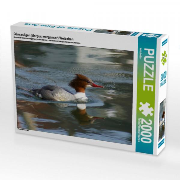 Puzzle Gänsesäger Mergus merganser Weibchen Foto-Puzzle Bild von