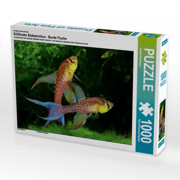 Puzzle Terranatos dolichopterus - VENEZUELA
