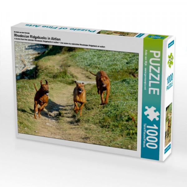 Puzzle Rhodesian Ridgebacks in Aktion