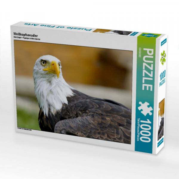 Puzzle Weißkopfseeadler