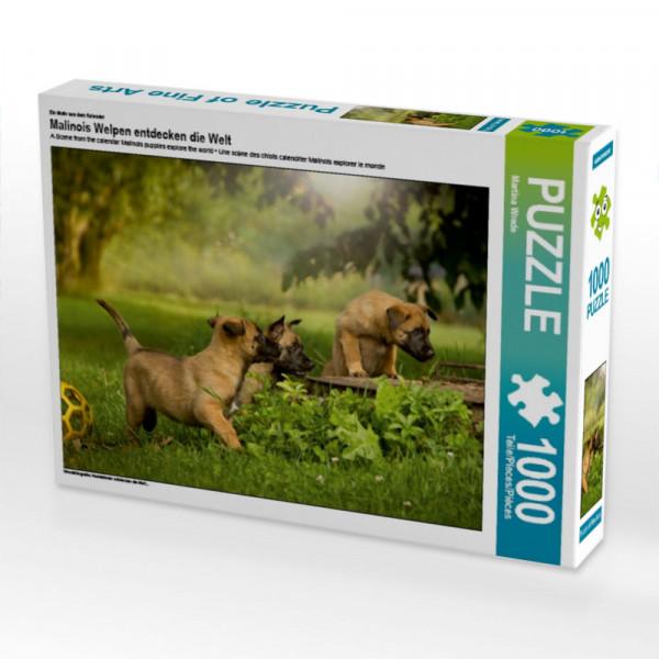 Puzzle Hundekinder entdecken die Welt...
