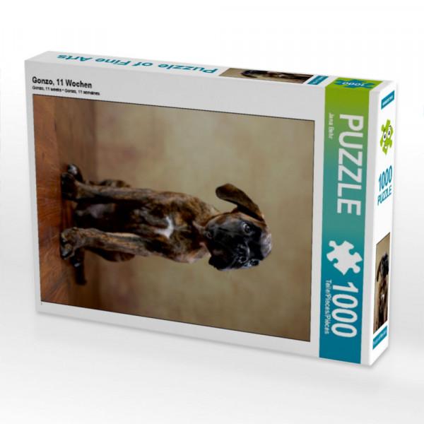 Puzzle Gonzo 11 Wochen