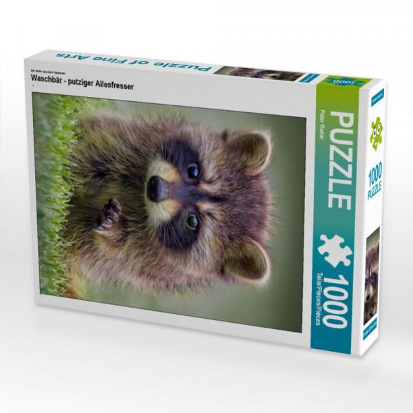 Puzzle Waschbär - putziger Allesfresser