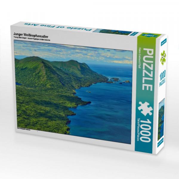 Puzzle Junger Weißkopfseeadler