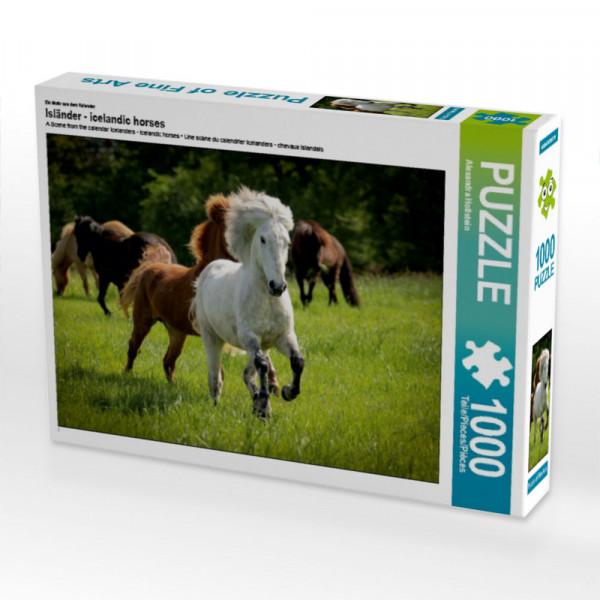 Puzzle Isländer - icelandic horses