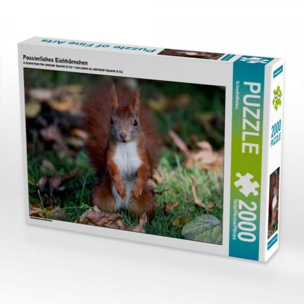 Nahaufnahme Eichhörnchen Puzzle Possierliches Eichhörnchen 2000 Teile Puzzle quer Motiv 1 Bild 1