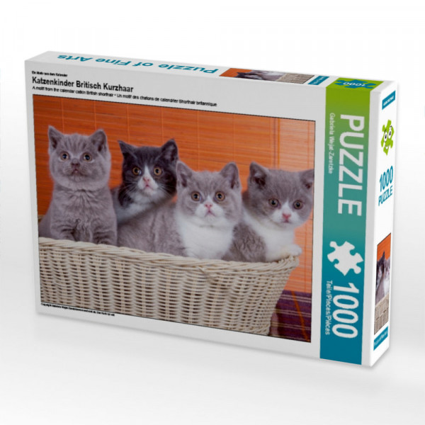Puzzle Katzenkinder Britisch Kurzhaar