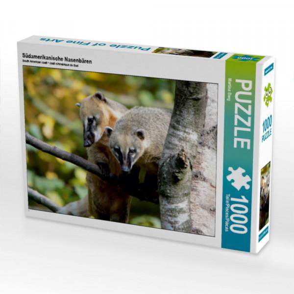 Puzzle Südamerikanische Nasenbären