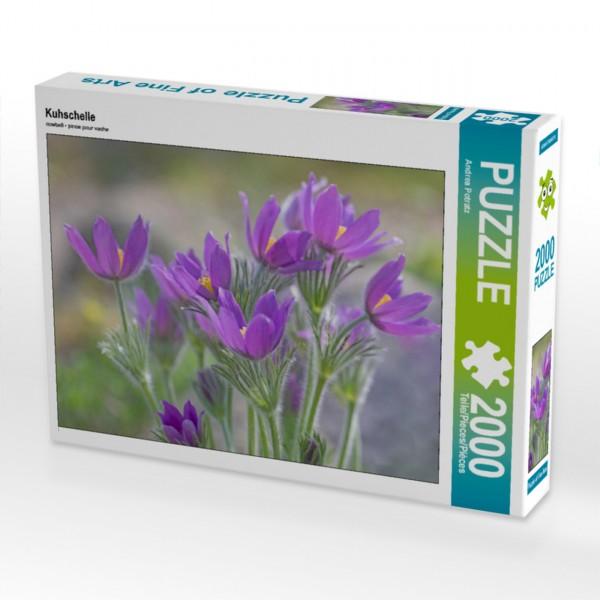 Puzzle Kuhschelle 2000 Teile Foto-Puzzle   Motiv 1 Bild 1
