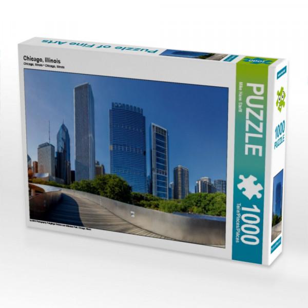 Puzzle Chicago Illinois
