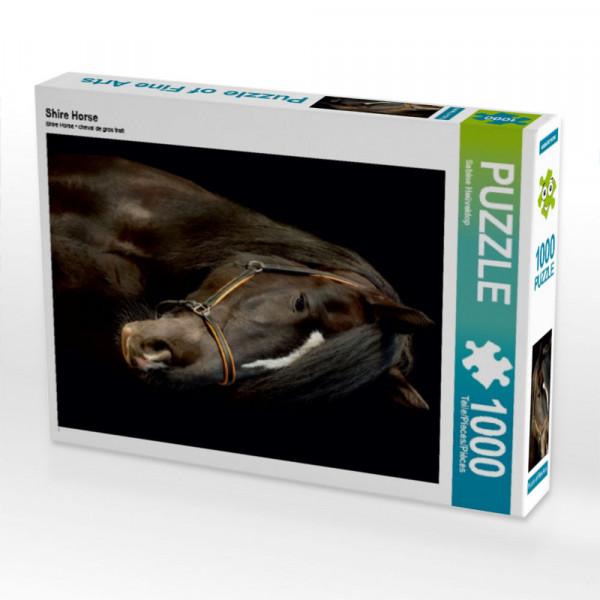 Puzzle Shire Horse
