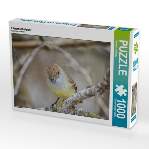 Puzzle Fliegenschnäpper