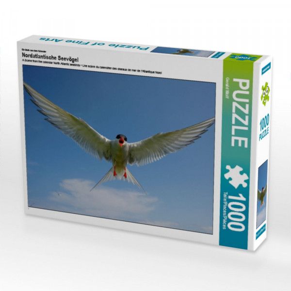 Puzzle Nordatlantische Seevögel