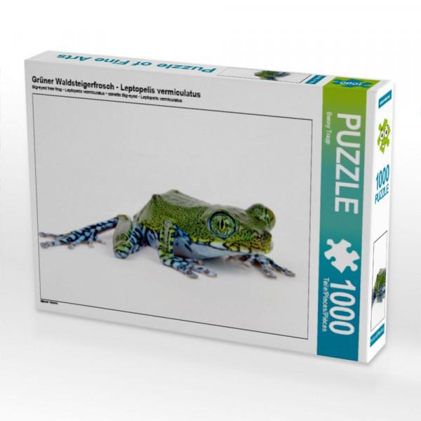 Puzzle Grüner Waldsteigerfrosch - Leptopelis vermiculatus