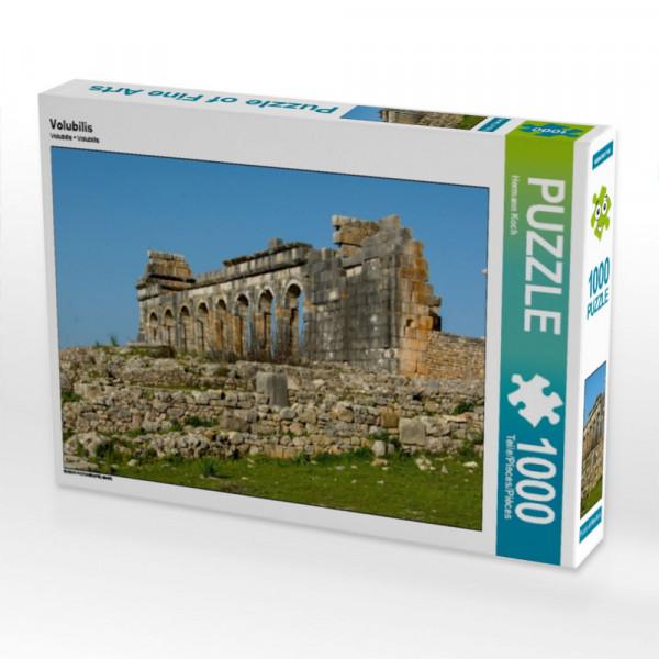 Puzzle Volubilis