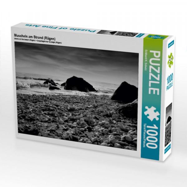 Puzzle Muscheln am Strand Rügen