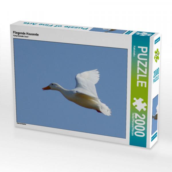 Puzzle Fliegende Hausente Foto-Puzzle Bild von