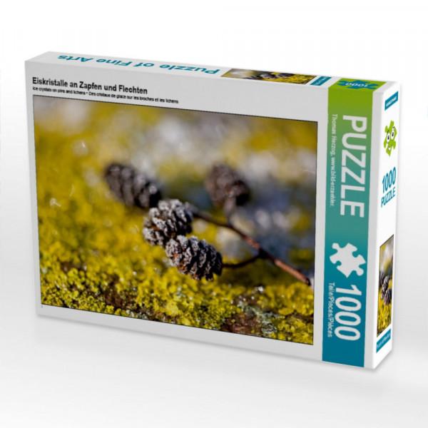 Puzzle Eiskristalle an Zapfen und Flechten