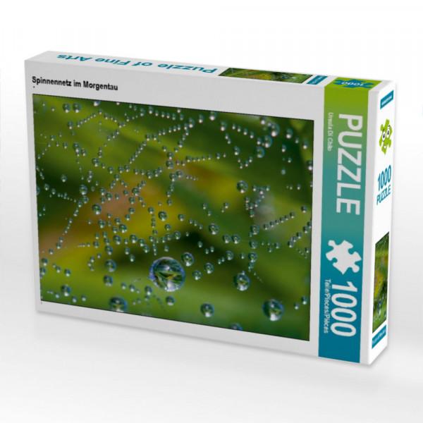 Puzzle Spinnennetz im Morgentau