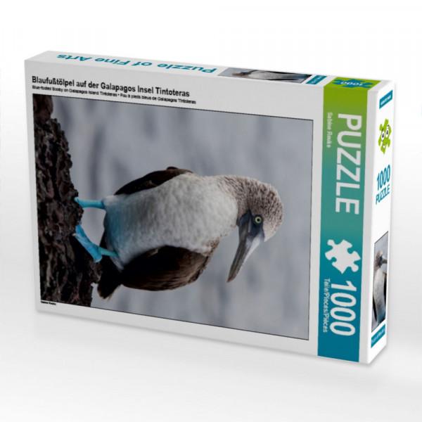 Puzzle Blaufußtölpel auf der Galapagos Insel Tintoteras