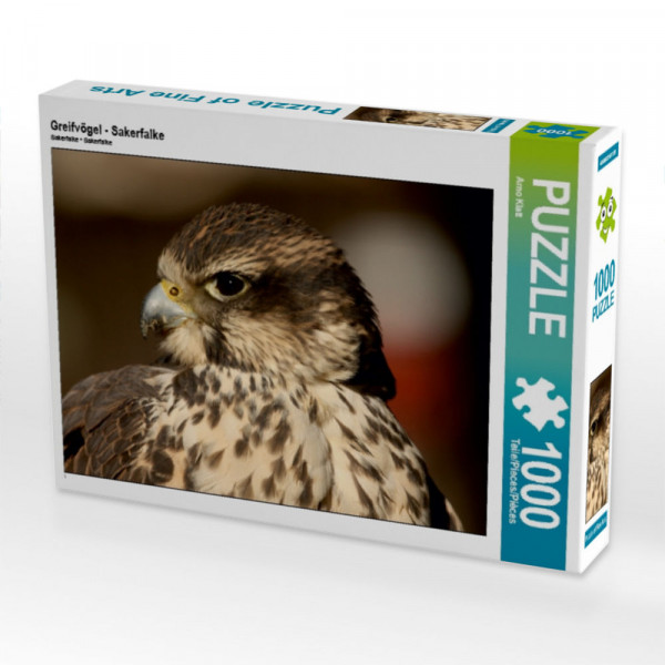 Puzzle Greifvögel - Sakerfalke