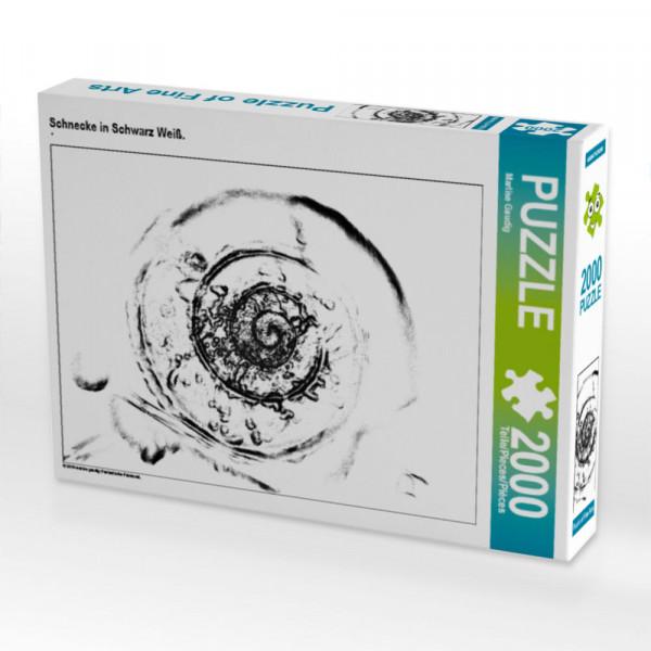 Puzzle Schnecke in Schwarz Weiß. Foto-Puzzle Bild von Gaudig Marlise