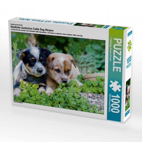 Puzzle Niedliche Australian Cattle Dog Welpen
