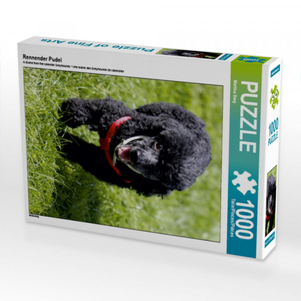 Puzzle Rennender Pudel
