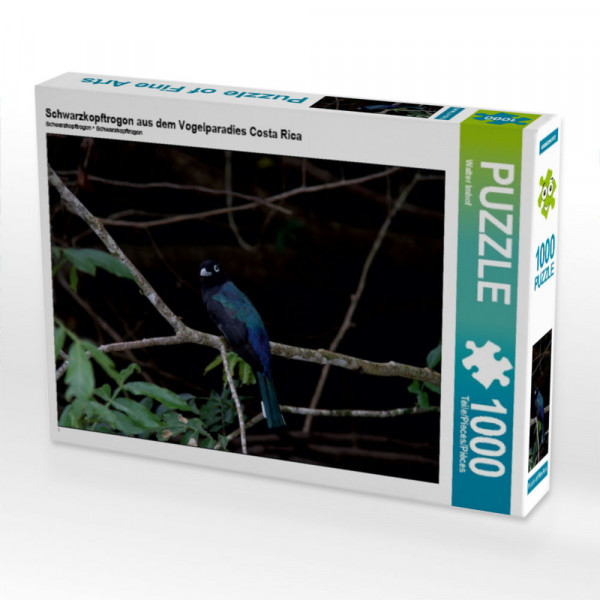 Puzzle Schwarzkopftrogon aus dem Vogelparadies Costa Rica