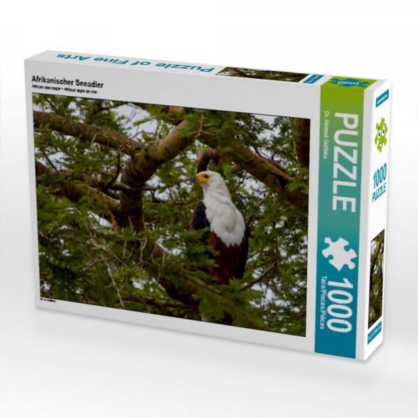 Puzzle Afrikanischer Seeadler