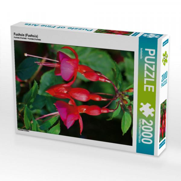 Puzzle Fuchsie Fuchsia Foto-Puzzle Bild von