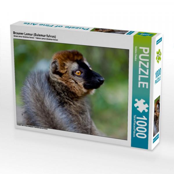 Puzzle Brauner Lemur Eulemur fulvus