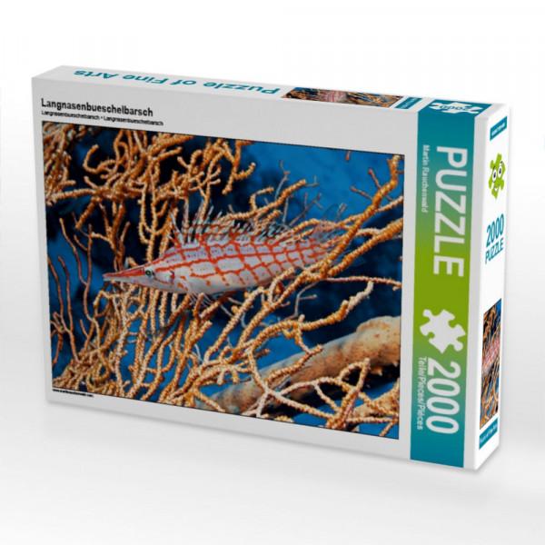Puzzle Langnasenbueschelbarsch Foto-Puzzle Bild von Rauchenwald Martin