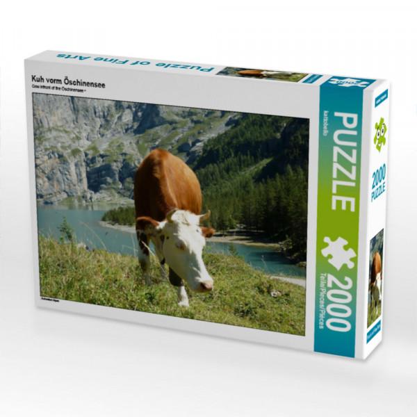Puzzle Kuh vorm Öschinensee Foto-Puzzle Bild von