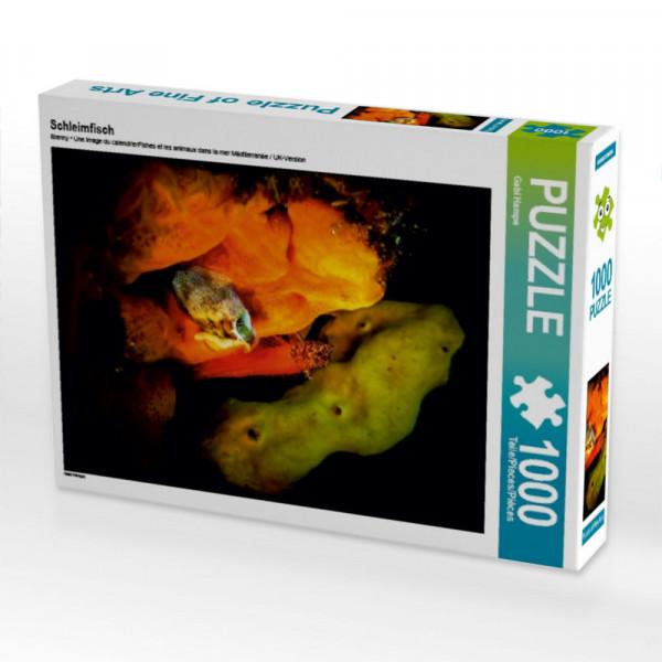 Puzzle Schleimfisch