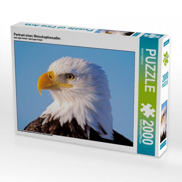 Puzzle Portraet eines Weisskopfseeadler. Foto-Puzzle Bild von KOPFLE ROLF