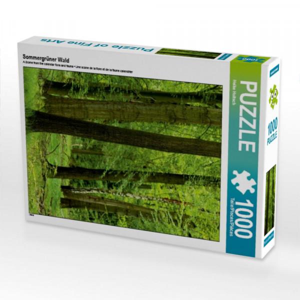 Puzzle Sommergrüner Wald