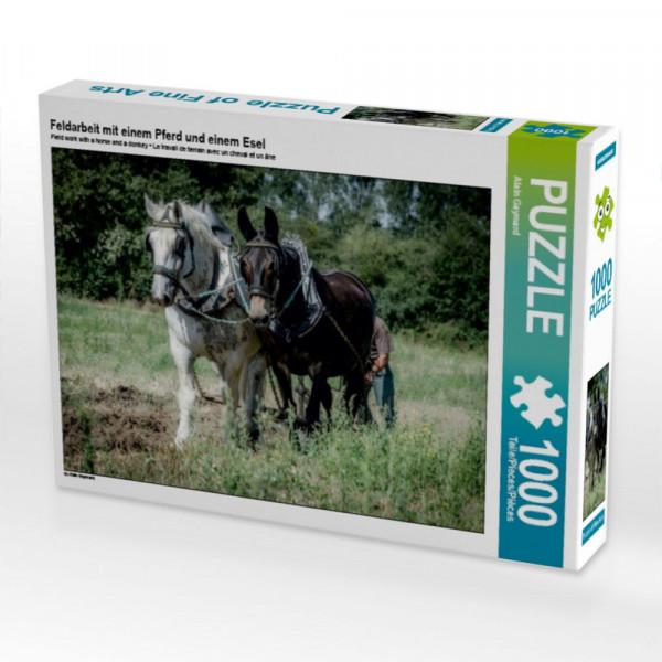 Puzzle Feldarbeit mit einem Pferd und einem Esel