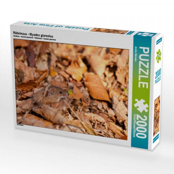 Puzzle Rötelmaus - Myodes glareolus Foto-Puzzle Bild von Webeler Janita