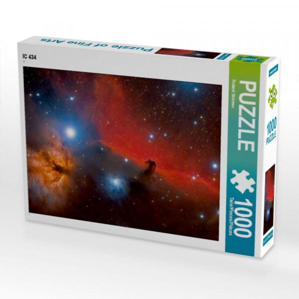 Puzzle IC 434