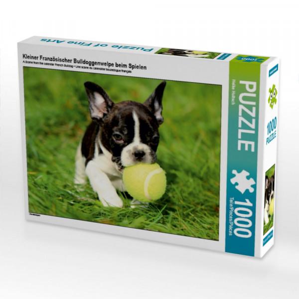 Puzzle Kleiner Französischer Bulldoggenwelpe beim Spielen
