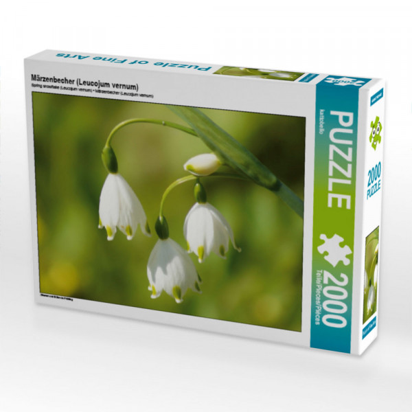 Puzzle Märzenbecher Leucojum vernum Foto-Puzzle Bild von