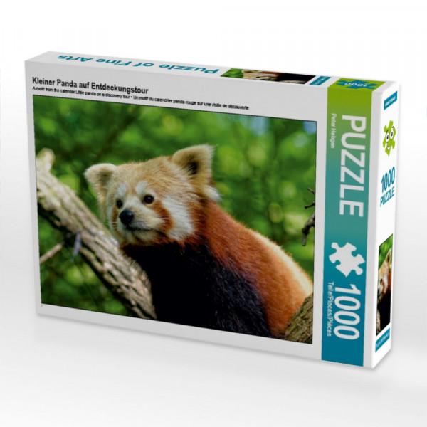 Puzzle Kleiner Panda auf Entdeckungstour
