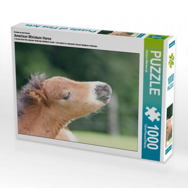 Puzzle American Miniature Horse