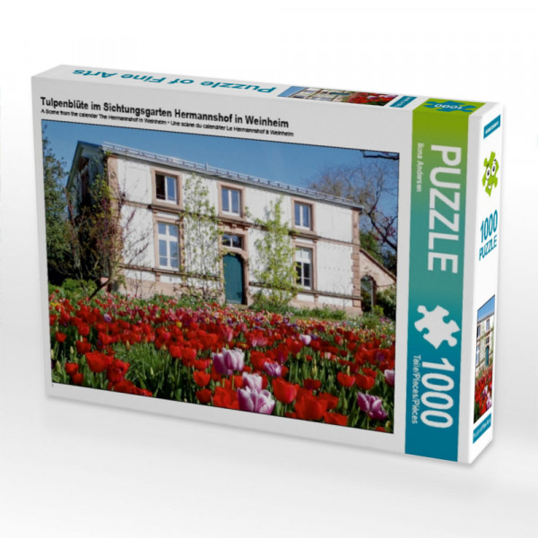 Puzzle Tulpenblüte im Sichtungsgarten Hermannshof in Weinheim