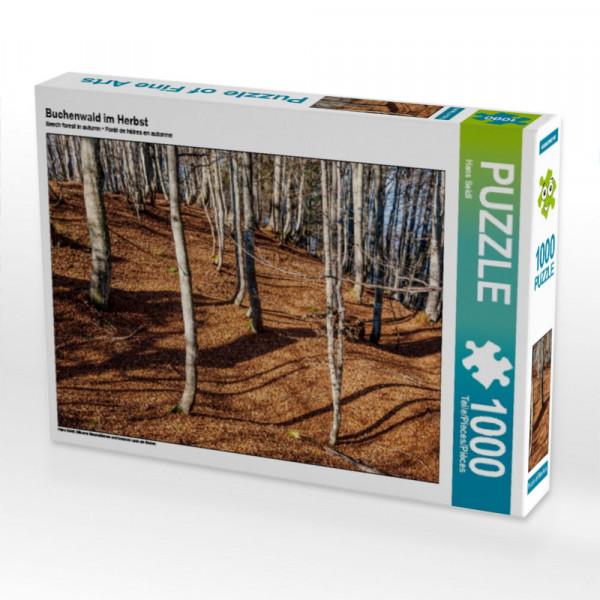 Puzzle Buchenwald im Herbst