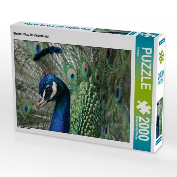 Puzzle Stolzer Pfau im Federkleid Foto-Puzzle Bild von